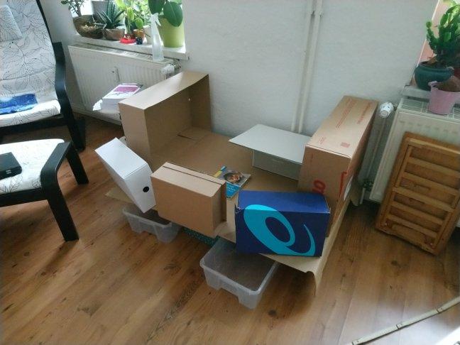 Gestapelte Kartons simulieren die möglichen Abmessungen des Geheges im Wohnzimmer